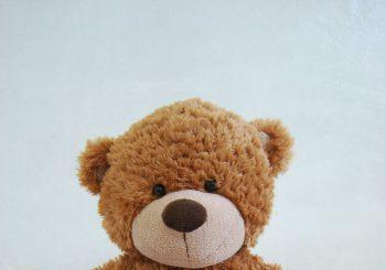 https://commons.wikimedia.org/wiki/Category:Plush_toys#/media/File:Oso_de_peluche,_regalo.JPG