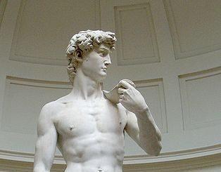 https://commons.wikimedia.org/wiki/File:Michelangelo%27s_David.jpg?uselang=lt